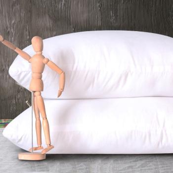 明日零点:雅鹿家纺 羽丝绒睡枕  48*74CM9.9元,仅限手机端